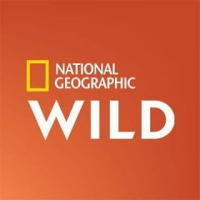 3. National Geographic Wild